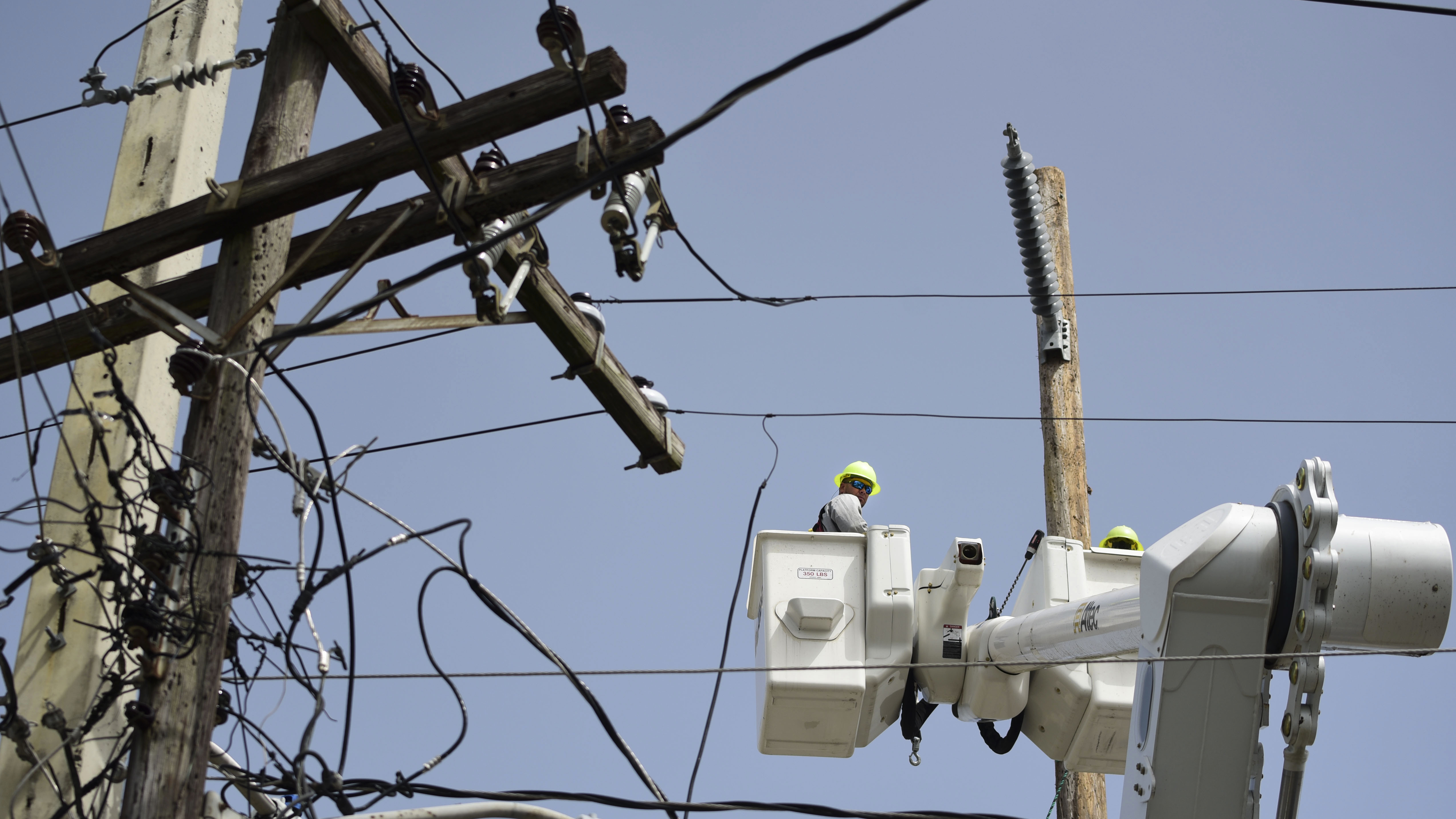 Puerto Rico\u0027s Power Authority Cancels Controversial Whitefish ...