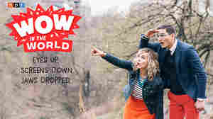 NPR's Breakout Podcast for Kids, 'Wow In The World', Returns With New Episodes