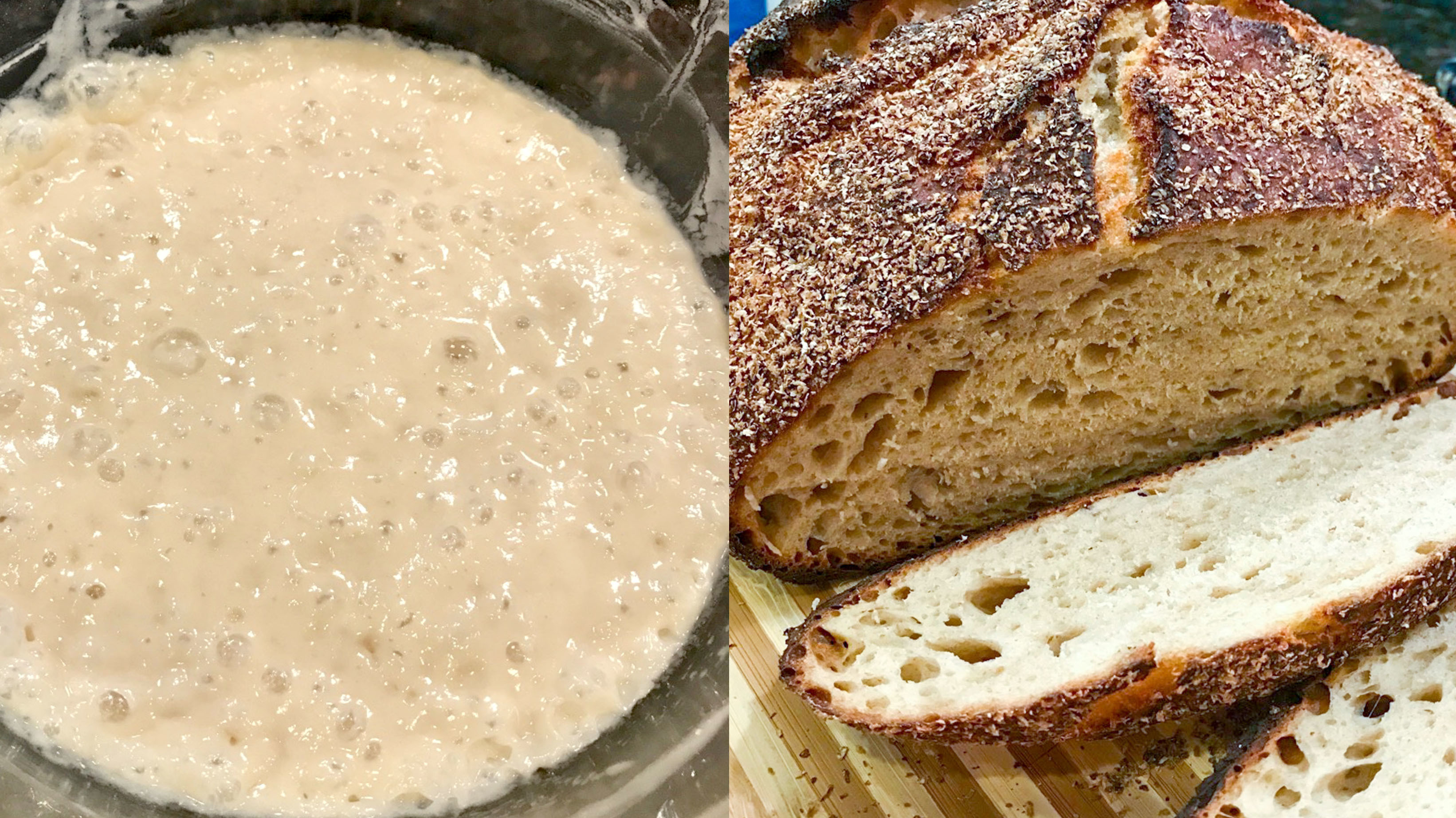 The Friendship Bread Project: Can Baking Promote Unity In A Divided World?