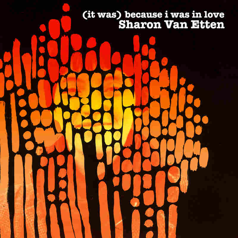 Sharon Van Etten, (it was) because i was in love