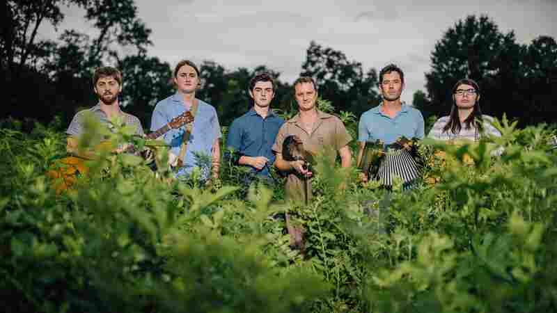 Lost Bayou Ramblers On World Cafe