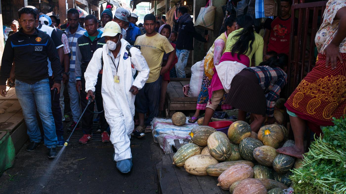 How Madagascar Took Control Of Its Plague Outbreak