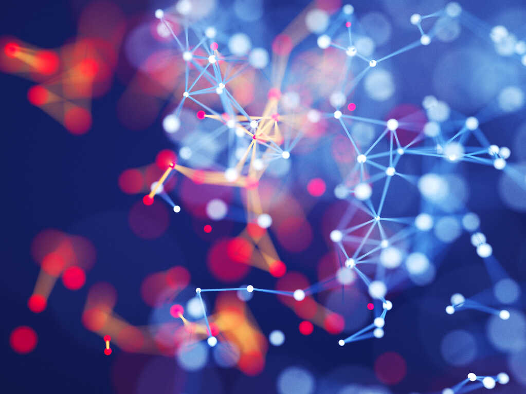 Network Theory has hundreds of applications, says physicist Adam Frank.