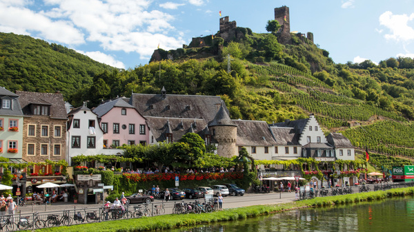 Grapes have been growing along the steep slopes of Germany