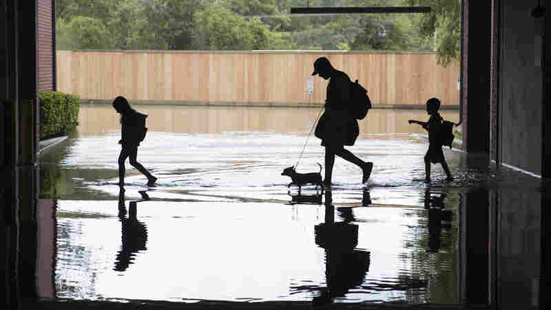 Scientists Glimpse Houston's Flooded Future In Updated Rainfall Data