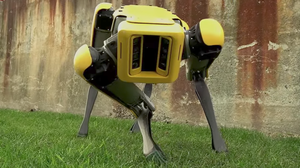 Does This Robot Freak You Out?