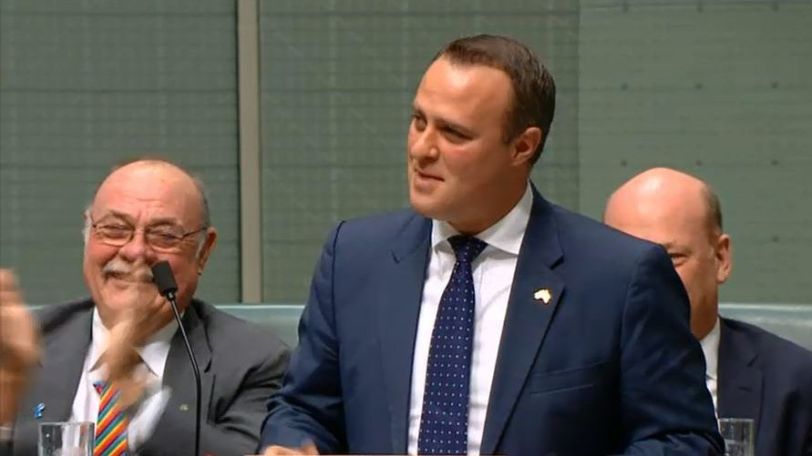 'Well Done Mate': Australian Lawmaker Proposes During Same-Sex Marriage Debate