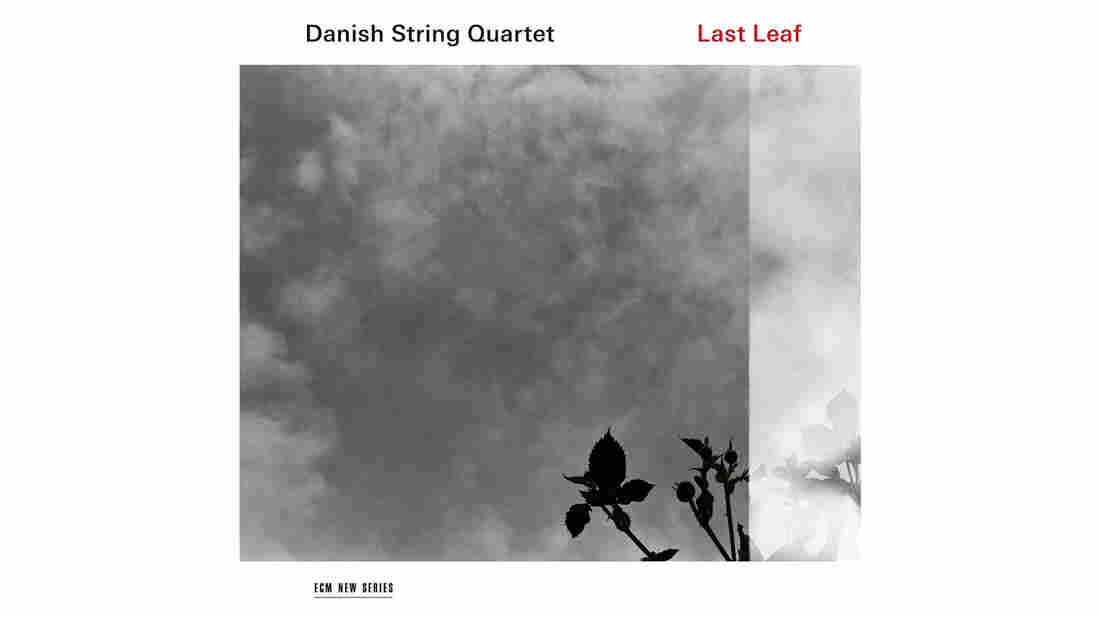 Danish String Quartet, Last Leaf