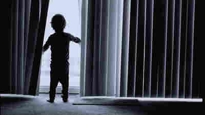 Window Blind Cords Still Pose A Deadly Risk To Children