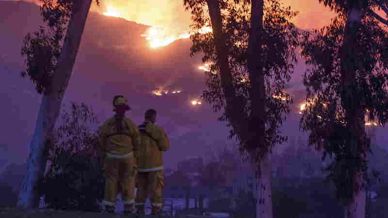 Firefighters Struggle To Contain Southern California's Thomas Fire