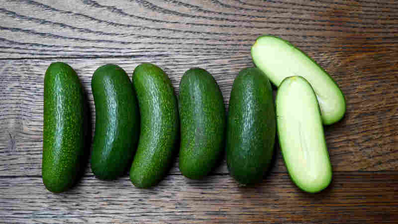 Avocado Hand Injuries Are Real. Is A Seedless Fruit The Answer?