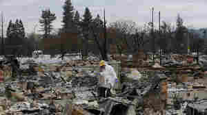 Calif. Fire Victims Put Up Christmas Trees Where Homes Once Stood