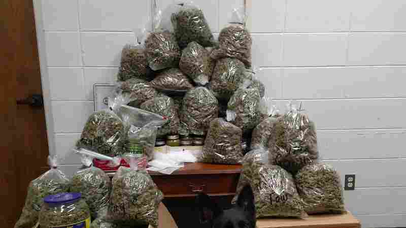 Elderly Couple Stopped In Nebraska With 60 Pounds Of Weed 'For Christmas Presents'
