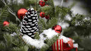 White Christmas Forecast For Some From Wyoming Through Maine