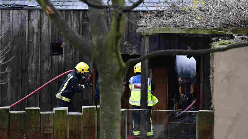 Fire Shutters London Zoo And Kills At Least One Animal