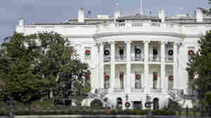 Portions Of Ailing White House Magnolia Removed Over Safety Concerns