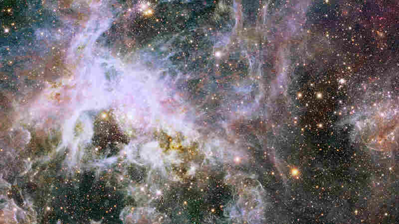 Astronomers Find Huge Stars More Common Than Previously Thought