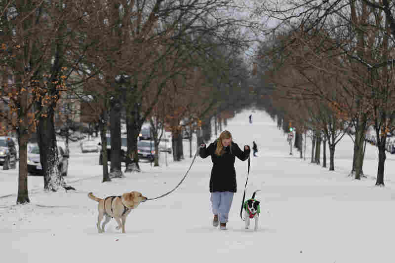 Katherine Reid walks her dogs on the snow-covered median in Richmond, Va. The storm is fueled by intense cold across the U.S., which collided with relatively warm air over the Atlantic.