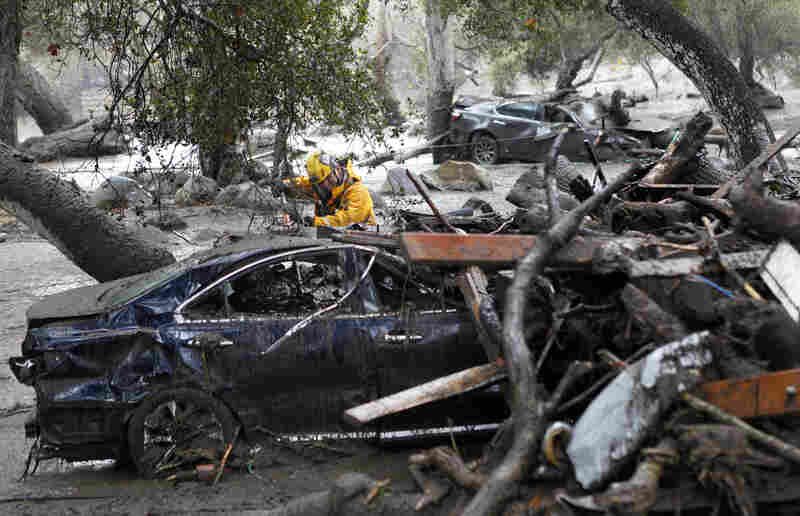 A member of the Long Beach Search and Rescue team looks for survivors in a car in Montecito