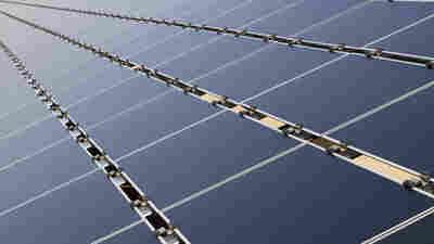 Trump Slaps Tariffs On Imported Solar Panels And Washing Machines