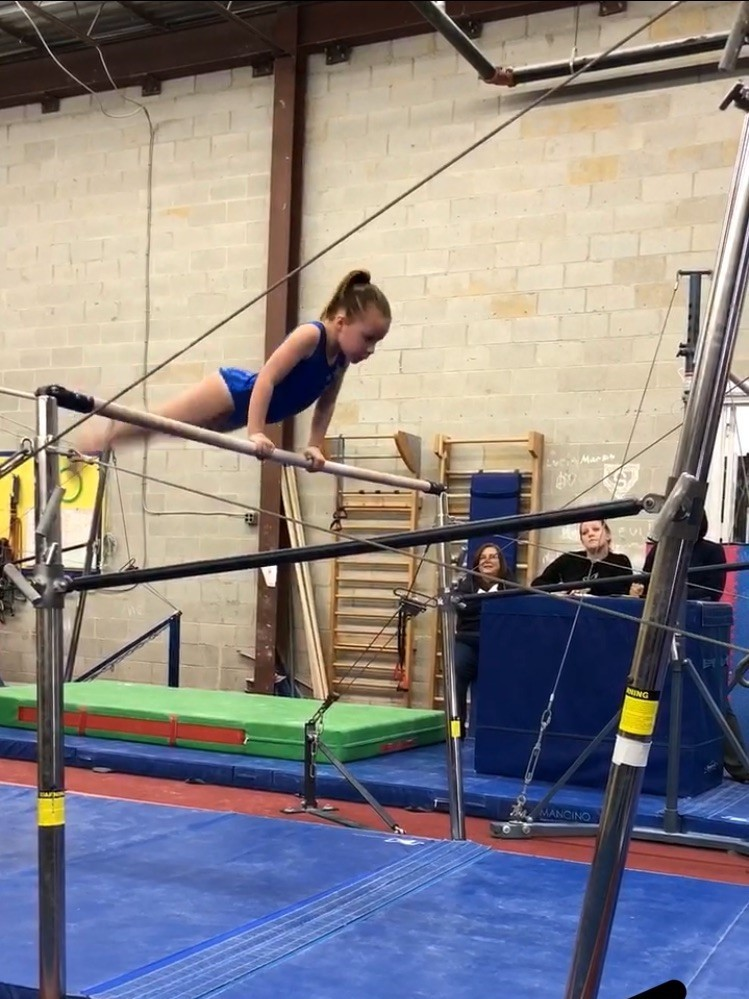 Image Result For Gymnastics Classes In Maryland