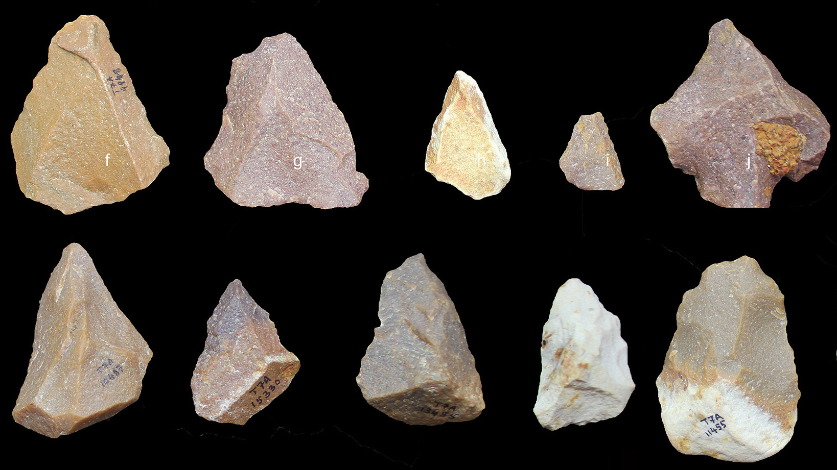 Ancient tools found in TN, show new Stone Age timeline