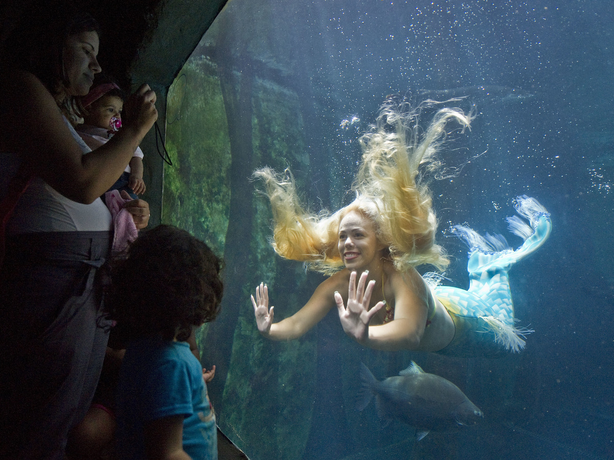 39 mermaids 39 and 39 mermen 39 of brazil refuse to be tamed for Fish tank mermaid