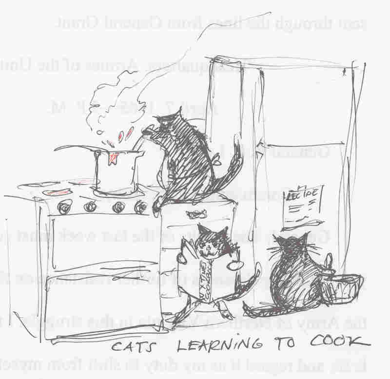 Cats learning to cook.