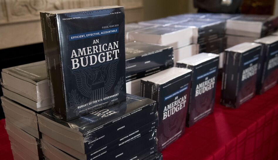 President Trump is unveiling his 2019 fiscal year budget proposal on Monday. (Saul Loeb/AFP/Getty Images)