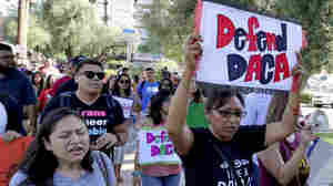 2nd Federal Court Blocks Trump From Rescinding DACA