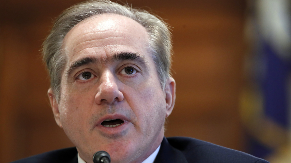 Veterans Affairs Secretary David Shulkin speaks during a House Committee on Veterans' Affairs on Capitol Hill in Washington earlier this month.
