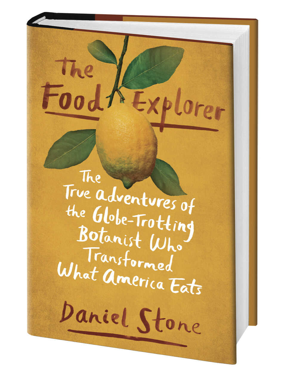 The Food Explorer book