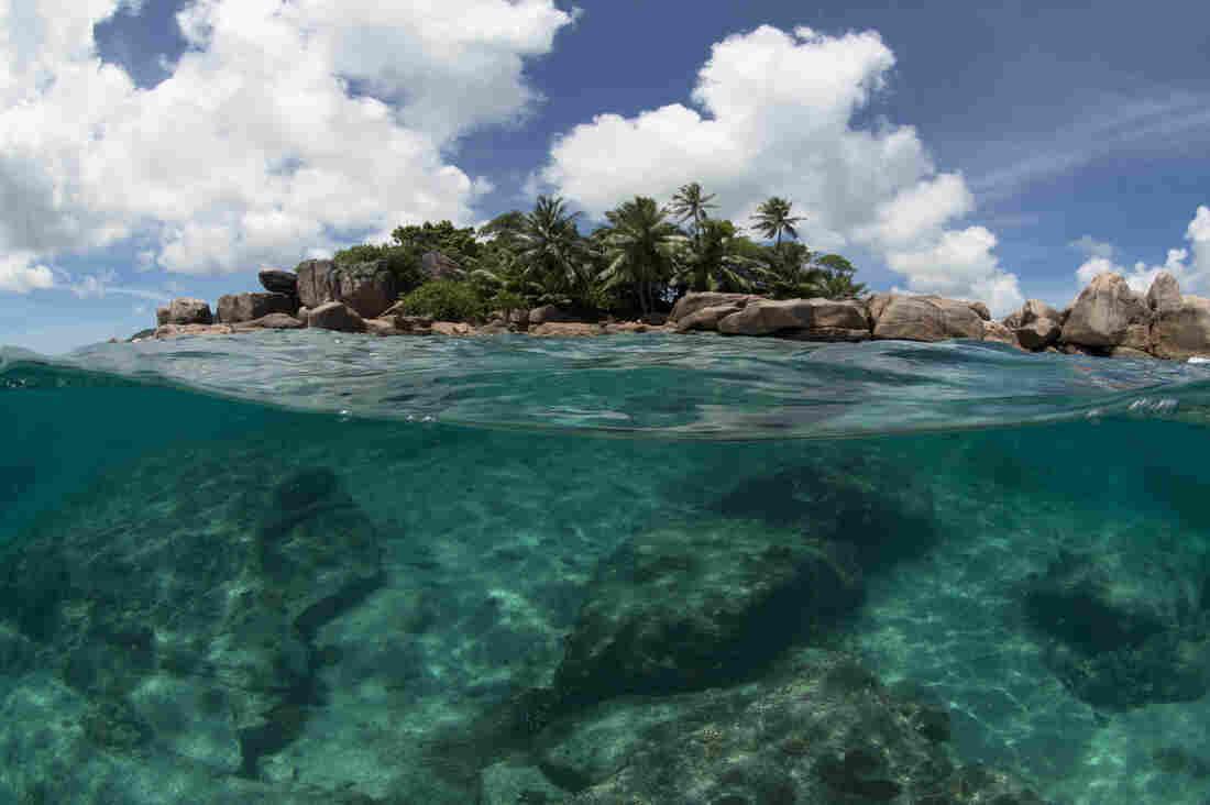 Seychelles designates new marine reserve