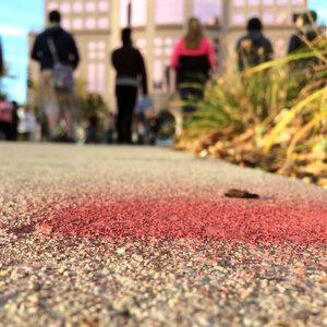 How Segregation Shapes Fatal Police Violence