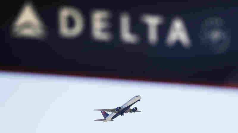 Georgia Lawmakers Punish Delta Air Lines Over NRA Feud