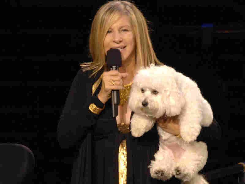 Barbra Streisand Explains: Why I Cloned My Dog