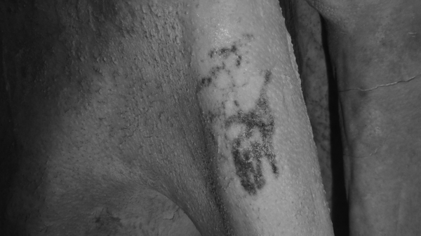 Egyptologists say that these markings on a predynastic male mummy, revealed using infrared imaging, are tattoos showing two animals.