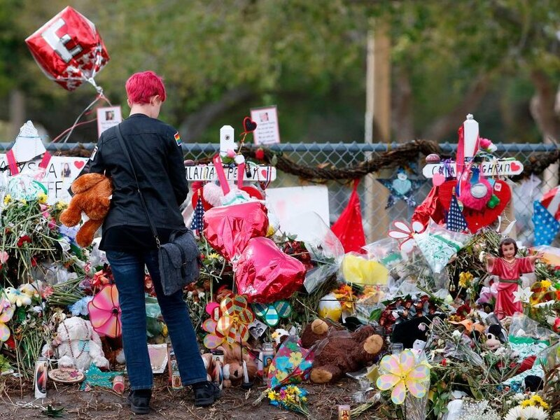 Gun Law Proposed In Florida Would Earmark Money For Mental Health