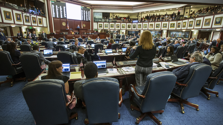 Florida Rep. Kristin Diane Jacobs speaks on the gun safety bill in the House chamber at the state capitol. Victims' families are urging them to pass the law. (Mark Wallheiser/AP)