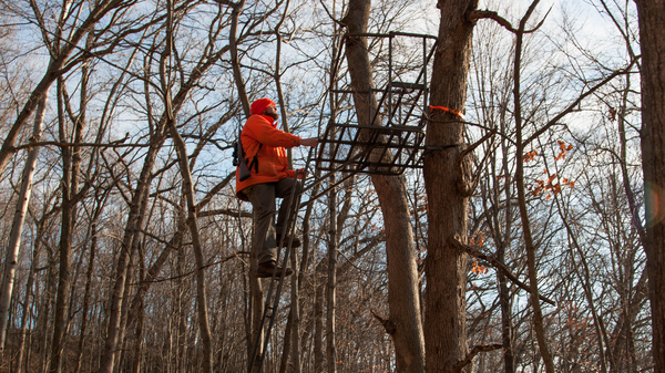 Jacob Zeuske climbs into a deer stand overlooking a wooded basin in Sauk County, Wis.