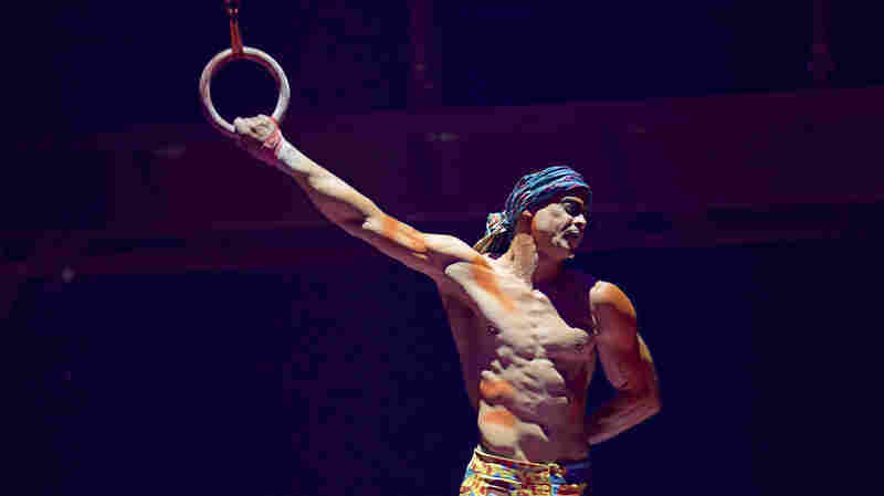 Cirque Du Soleil Performer Falls To His Death During Show In Florida