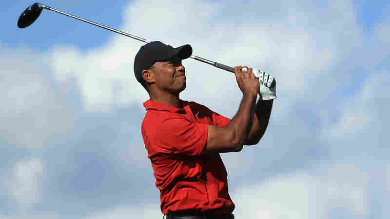 After Years Wandering A Golf Desert, Tiger Woods Stages A Dramatic Comeback