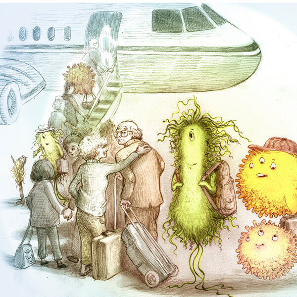 Pathogens On A Plane: How To Stay Healthy In Flight