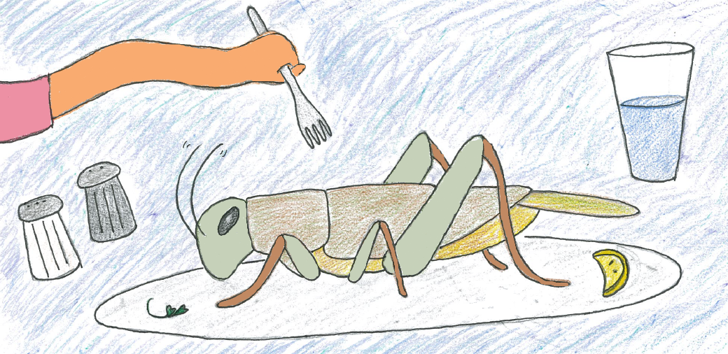 Could you eat a cricket?