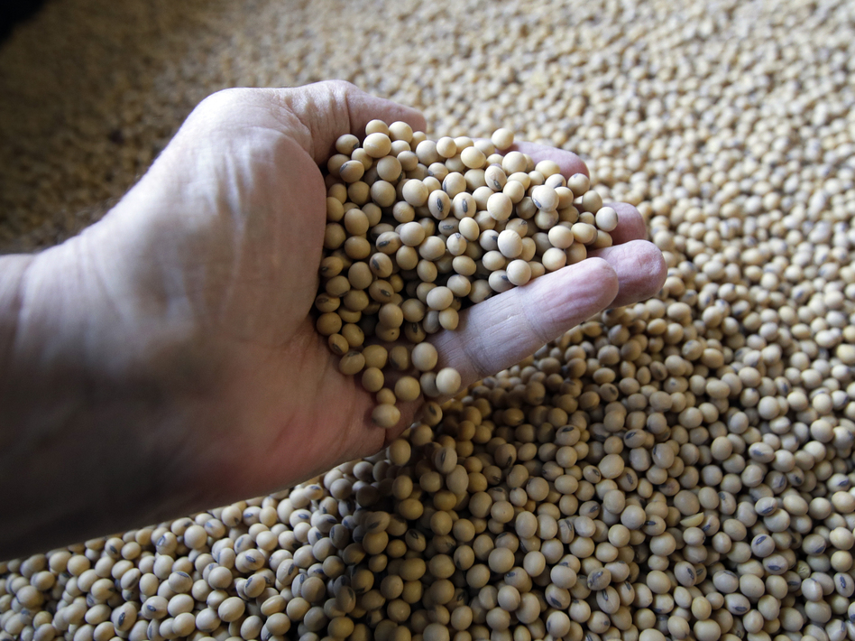 Soybeans ready for shipment and planting at a Kansas farm are one of the products at the center of the trade dispute with China. (Orlin Wagner/AP)