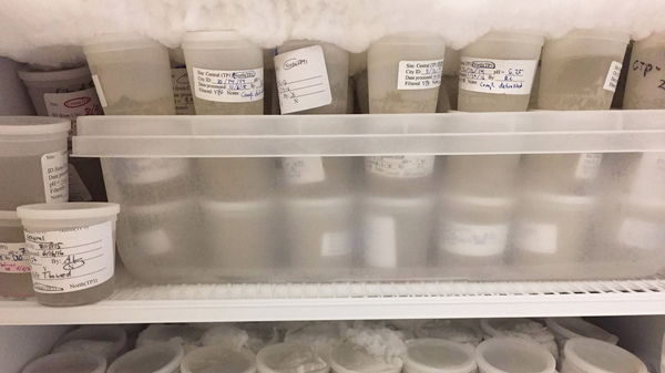 University of Puget Sound chemist Dan Burgard keeps a freezer full of archived samples from two wastewater treatment plants in western Washington in case he needs to rerun the samples or analyze a specific drug he didn