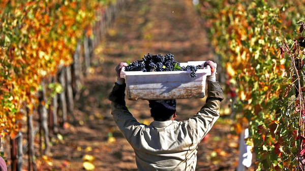 With the new tariff in effect, most American wines will incur duties of 29 percent.