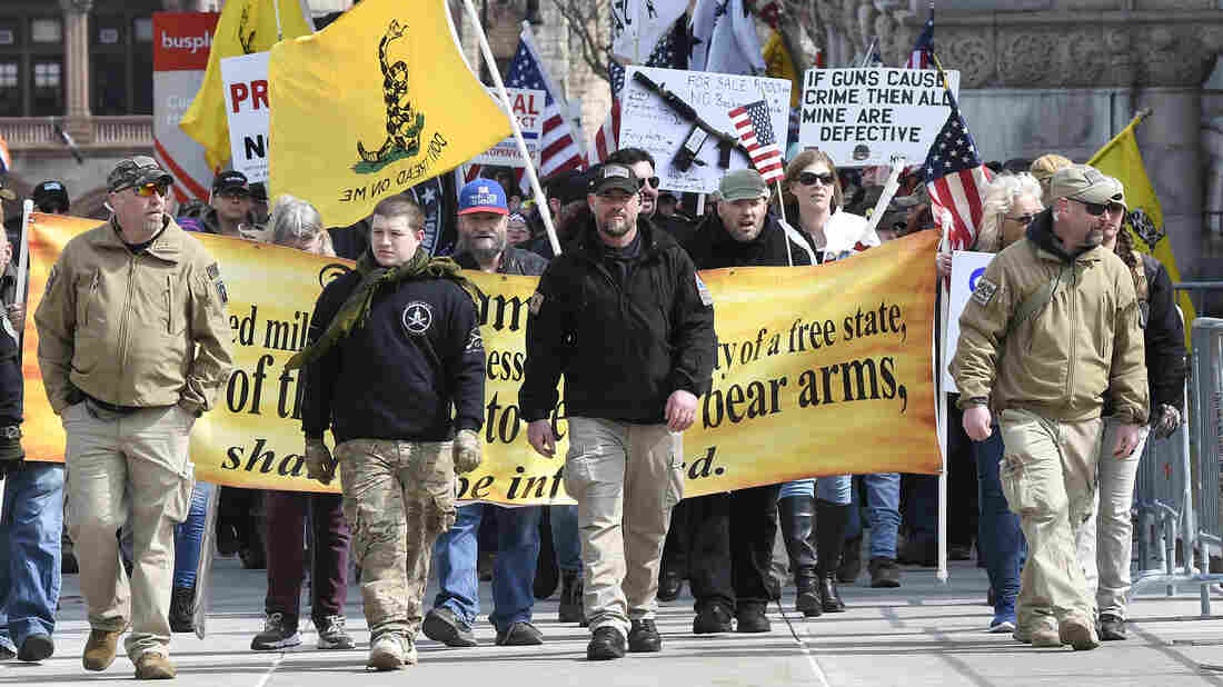Gun Rights Advocates Hold Rallies in US State Capitals