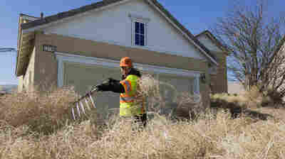 'Houses Disappeared' When Tumbleweeds Rolled Into This California City