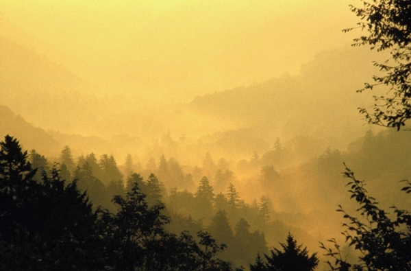 Novelist Richard Powers moved to Tennessee after first visiting the Smoky Mountains — shown above, at sunset — for research.